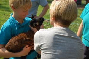 peter holding lamb-tour
